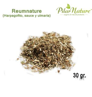 http://pilarnature.com/1225-thickbox_default/reumnature-pilar-nature30-grs.jpg