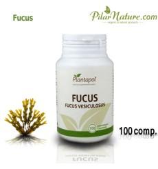 Fucus, fucus vesiculosus, 100 comprimidos, Plantapol, 550  mg