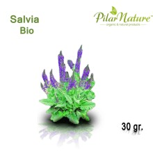 Salvia (Salvia lavandulifolia) de cultivo biológico 35 gr