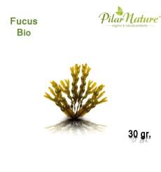 Fucus (Fucus Vesiculosus) 80 g. Naturcid, Pilar Nature.