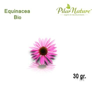 http://pilarnature.com/279-thickbox_default/equinacea-echinacea-purpurea-de-cultivo-biologico-30-gr.jpg