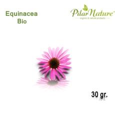 Equinácea (Echinacea purpurea) de cultivo biológico 30 gr
