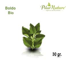 Boldo (Peumus boldus) de cultivo biológico 30 gr Pilar Nature