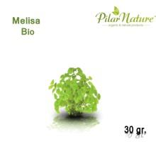 Melisa (Melissa officinalis) de cultivo biológico 30 gr. Pilar Nature