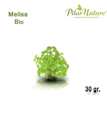 http://pilarnature.com/304-thickbox_default/melisa-melissa-officinalis-de-cultivo-biologico-30-gr.jpg
