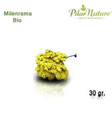 Milenrama (Achilea millefolium) de cultivo biológico 50 gr. Pilar Nature