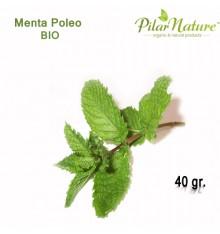 Poleo Menta, Planta Bio,Herbes del Moli, 40 g, Pilar Nature